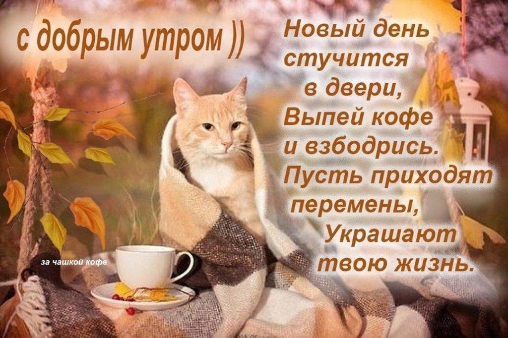 Подруге днем, открытки для телефонов с пожеланием доброго утра
