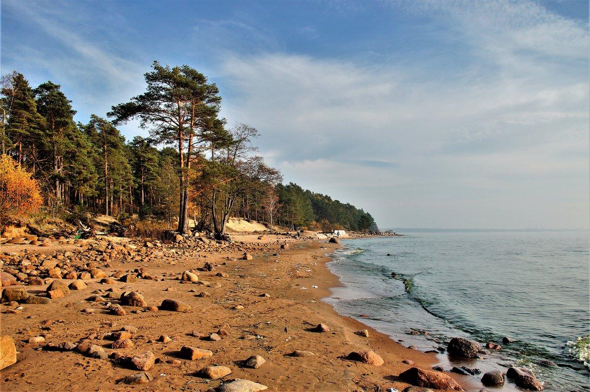 репино фото финского залива своем канале роман