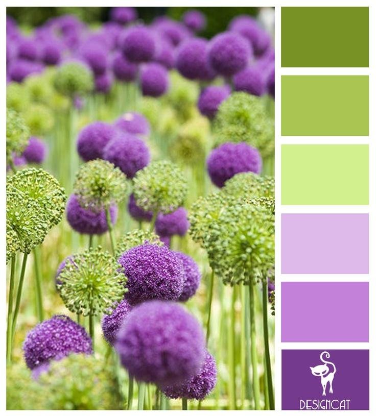 С какими цветами сочетается фисташковый цвет
