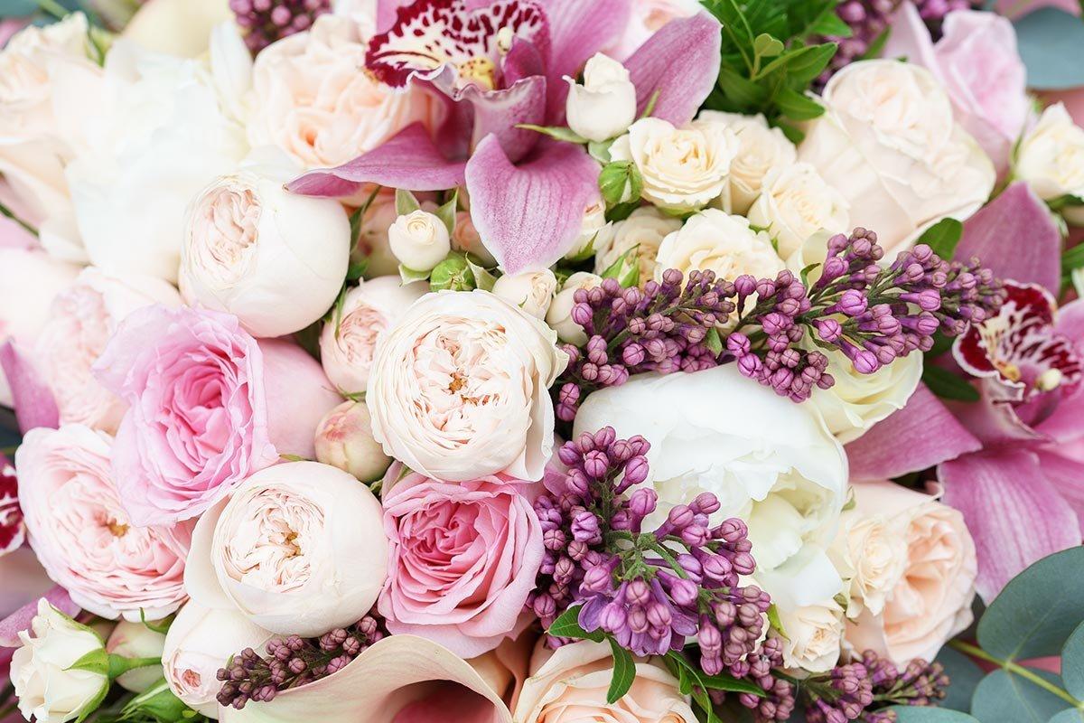 настроение фото красивого букета цветов с пионами будет