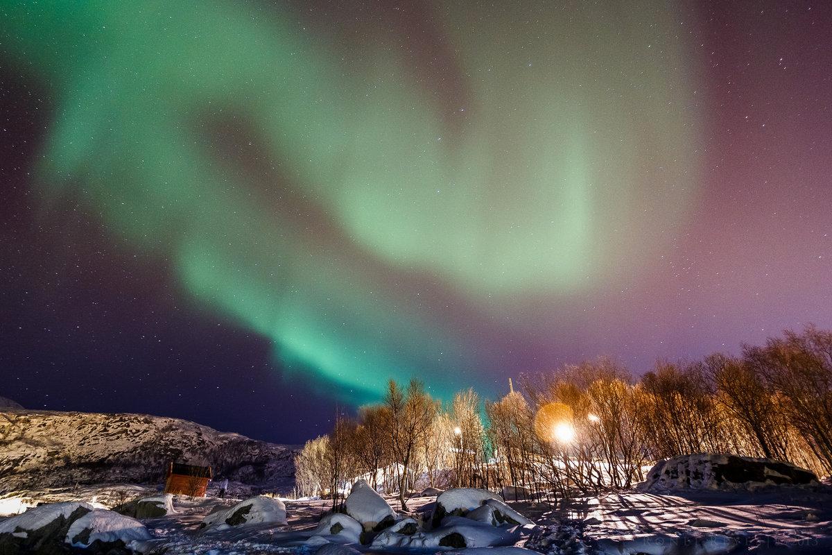 Фото картинки северного