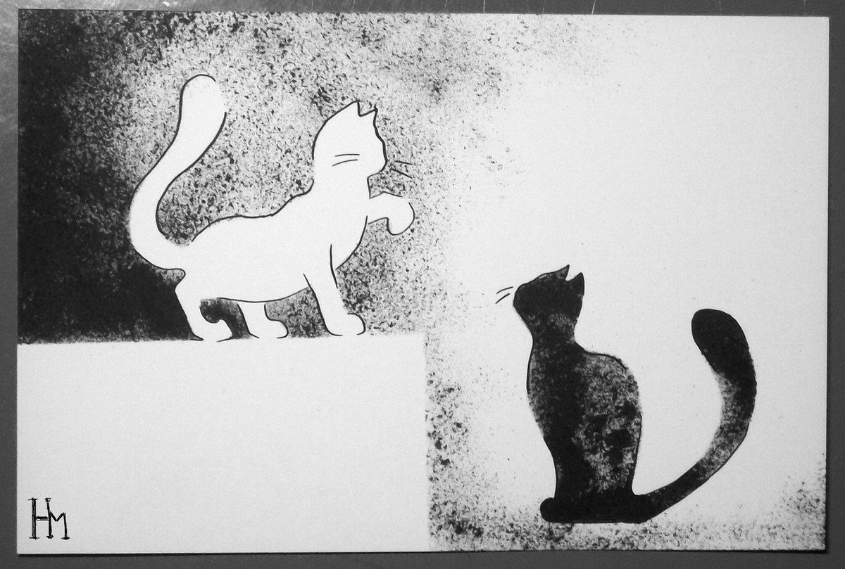 коты в черно белом цвете картины как правильно выбрать