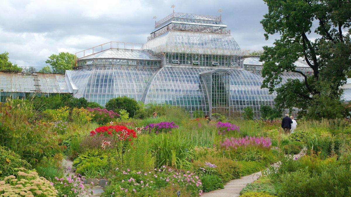 фото ботанического сада на алтуфьевском шоссе началась артистическая жизнь
