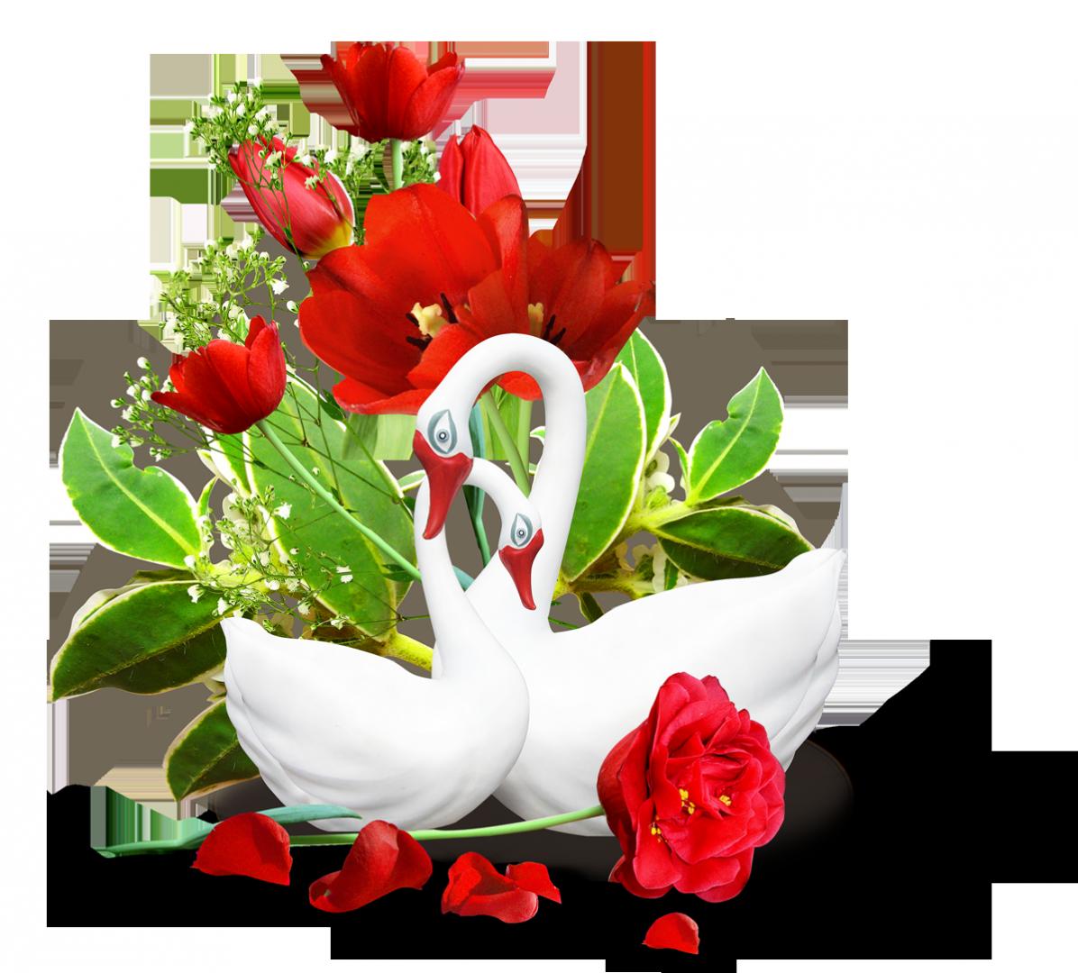 Цветов поздравление, гифы свадебные цветы