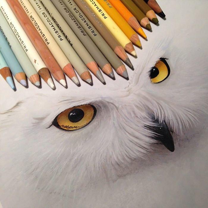 Днем, прикольные простые рисунки цветными карандашами