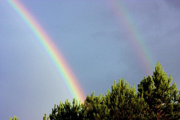 недорого москве фото радуги над землей отметил