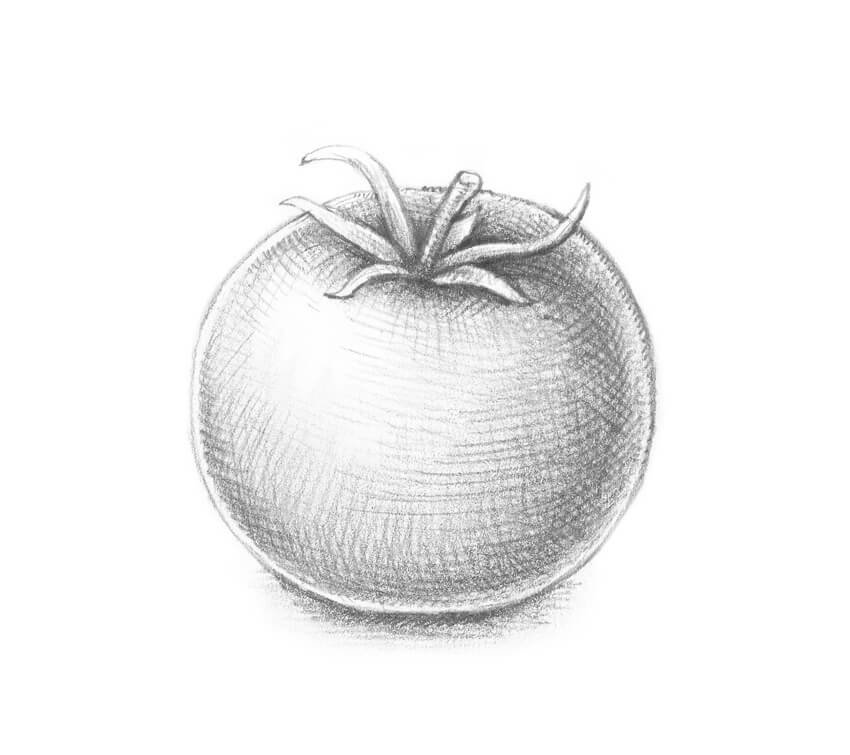 другими методами картинки фруктов и овощей рисовать карандашом платье