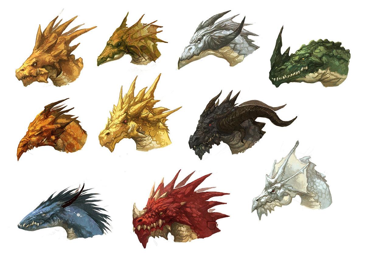 Драконы виды картинки