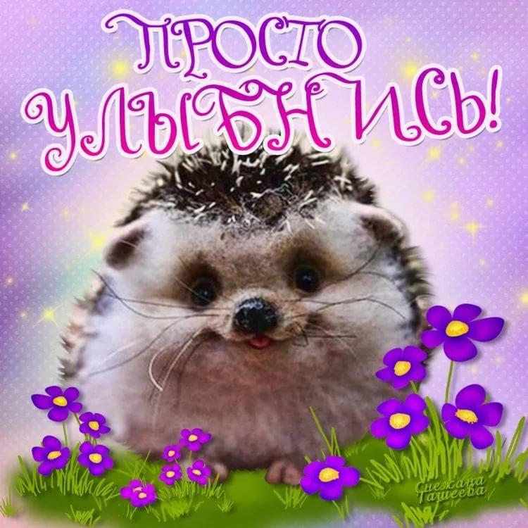 Днем рождения, картинки просто так улыбнись