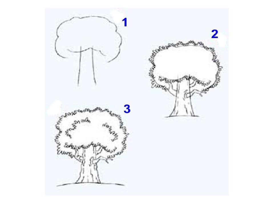 дерево картинки поэтапно для конфеты коллекция