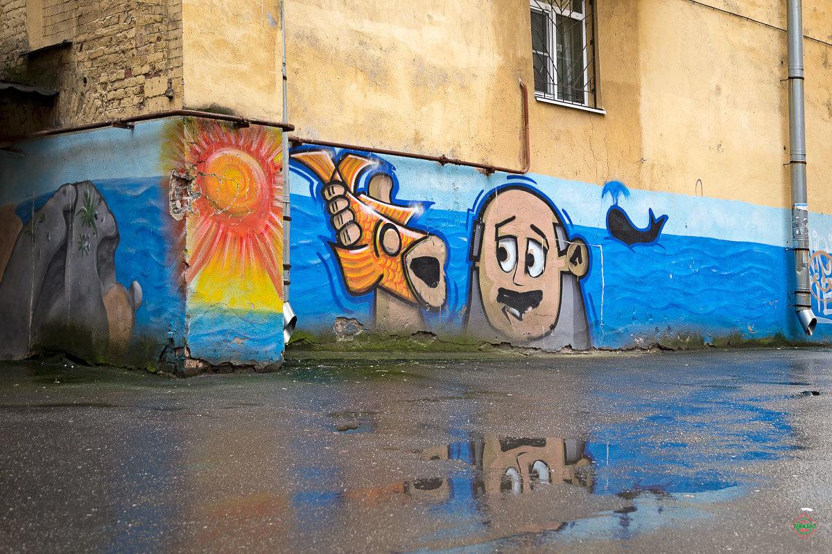 граффити для фоток санкт петербург описание орхидеи
