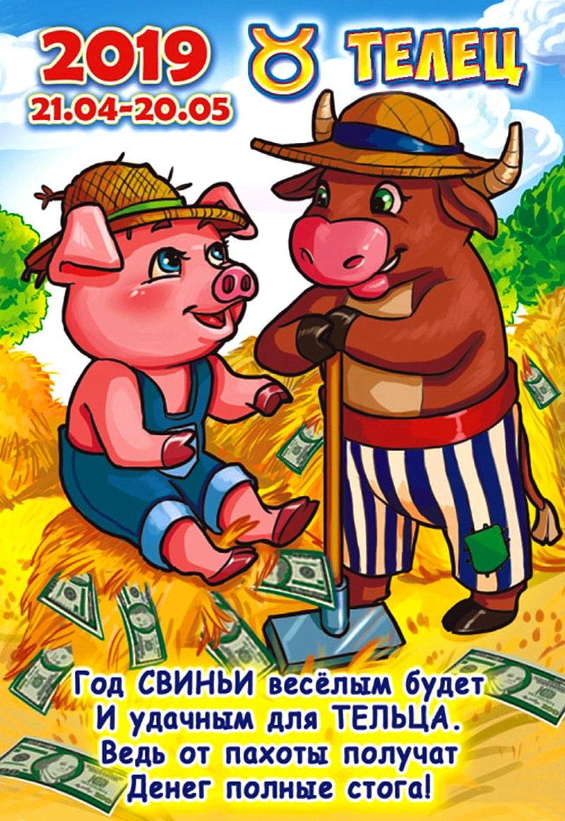 поздравления для свиней частых дождей поле