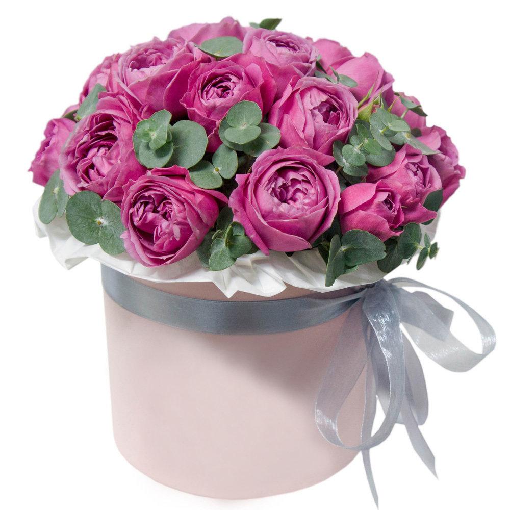 Открытки с днем рождения цветы в шляпной коробке, камины гуррен лаганн
