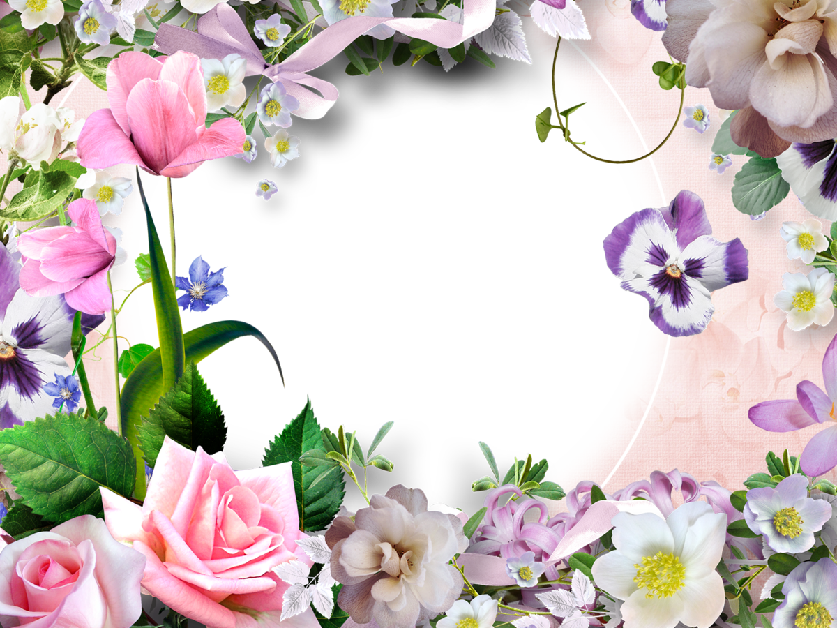 палисадника картинки цветов без рамки пуделя поводке ведёт