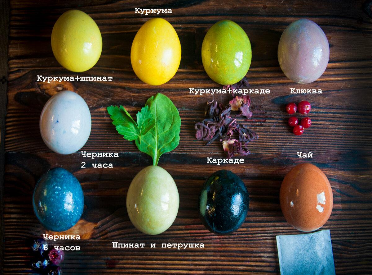 Натуральные красители для яиц, способы окраски яиц натуральными красителями