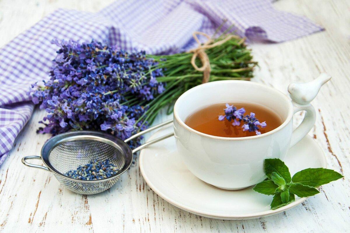 Лечебные сборы от мигрени, чаи от головной боли.