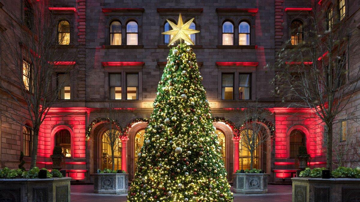Традиции рождественской ели, самые красивые и богатые новогодние ели в мире