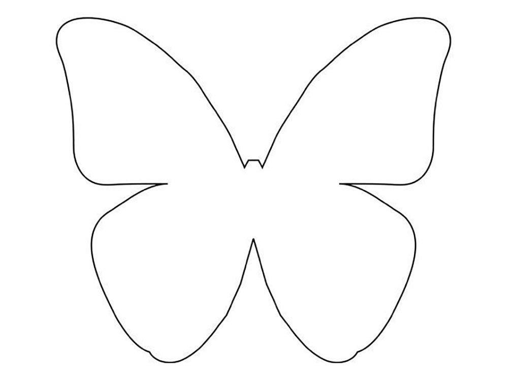 Шаблон бабочки открытка