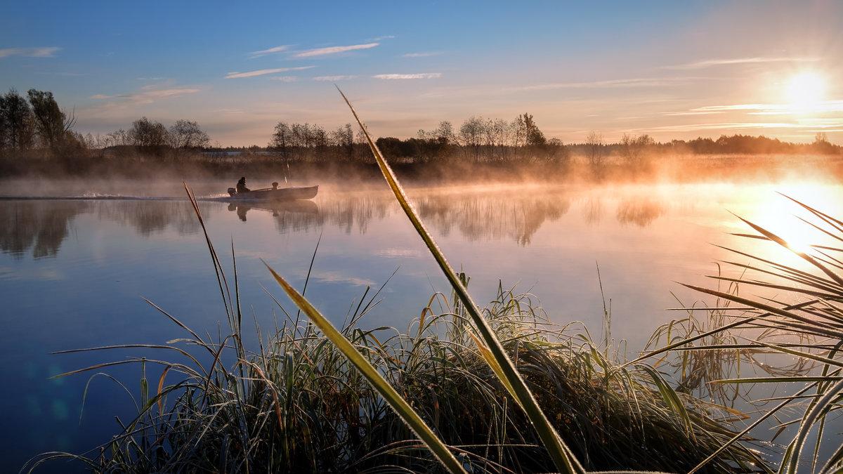 Картинки рыбалка на природе, веселые картинки