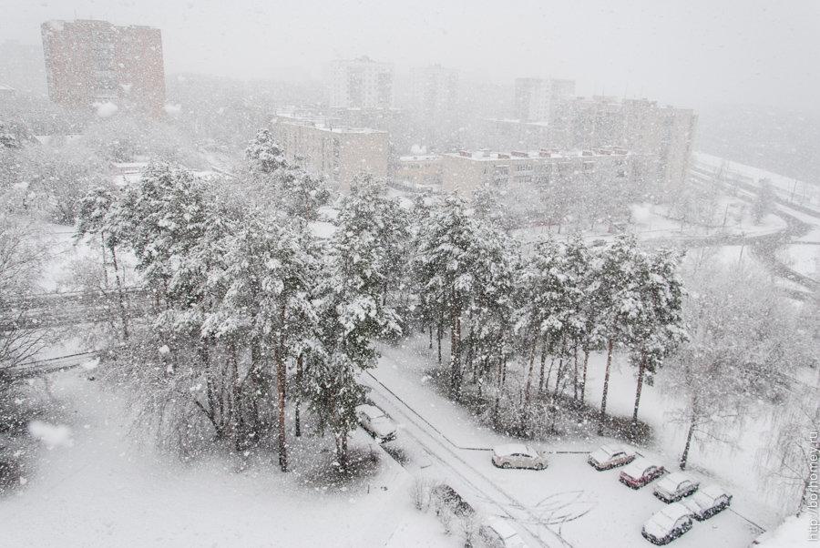 фото снег идет в городе шинника запустили акцию