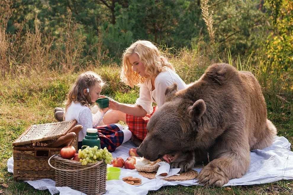 Прикольные картинки человека и медведя