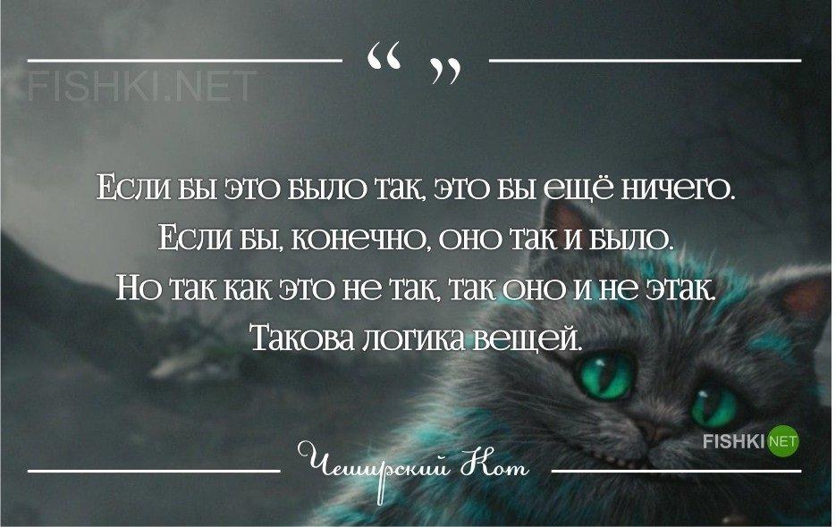 Демотиваторы с чеширским котом