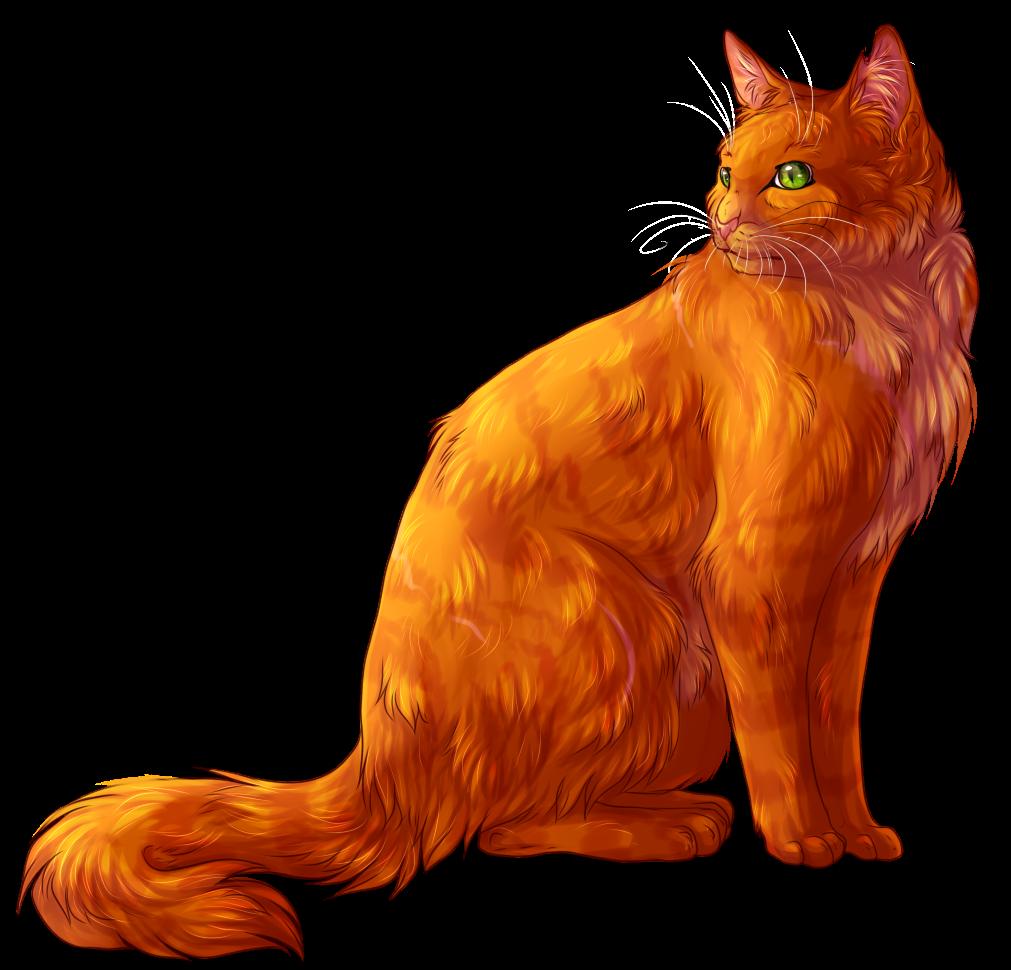 Картинки рыжих котов воителей