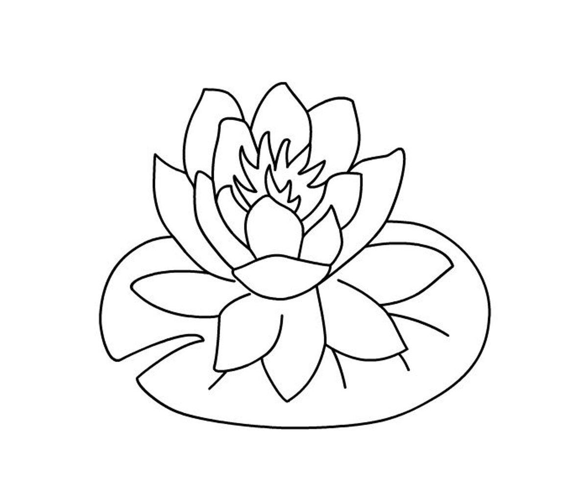 Картинка раскраска лотос