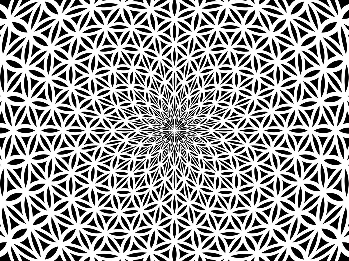 Цветок жизни картинка символ
