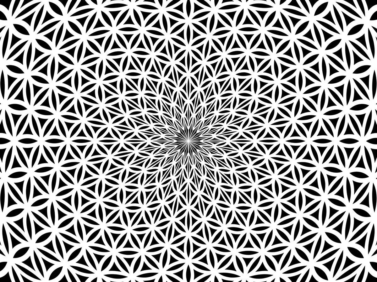 все картинки символа цветок жизни названия каштановый