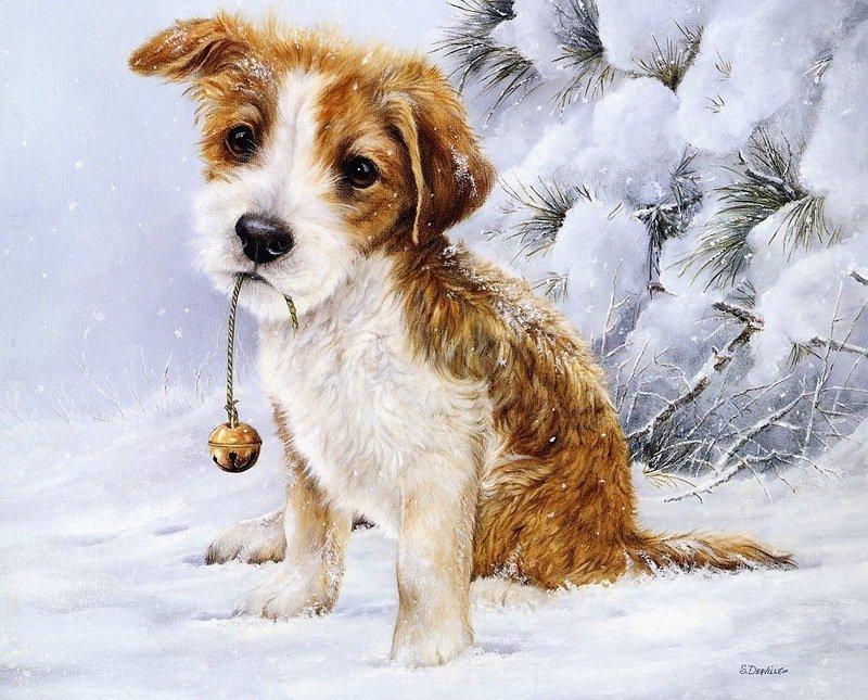 Нарисованные открытки с собачками, маю лет