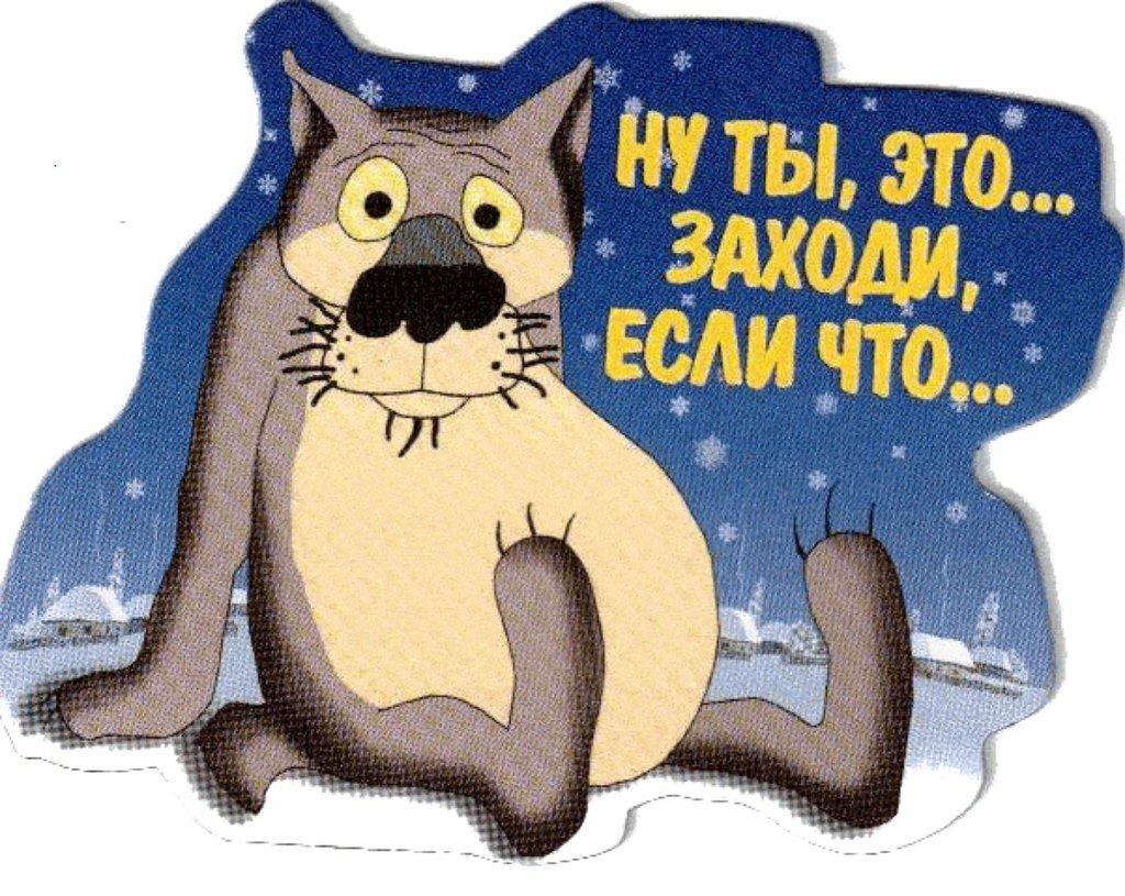 Приколы картинки мультяшные с волком надписями, открытка никаху смешные