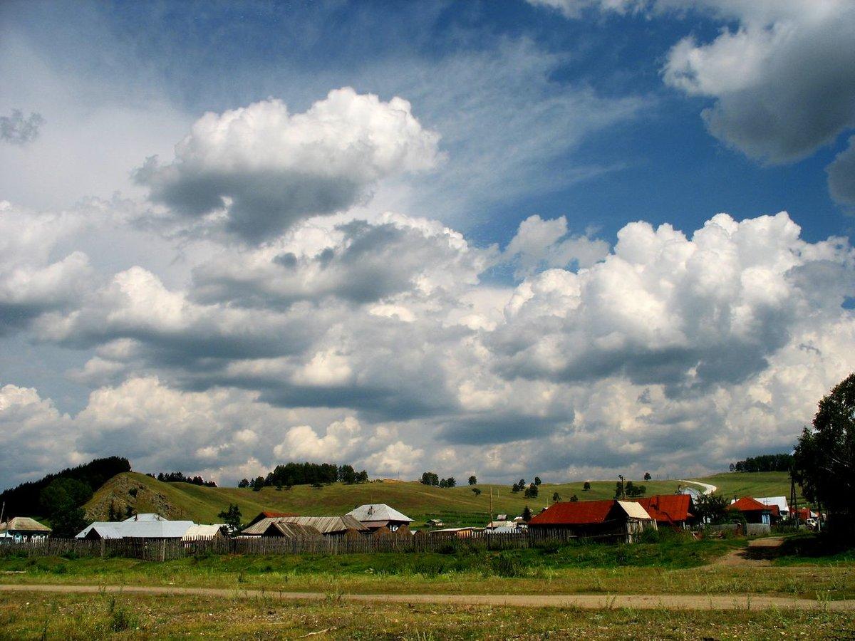 Варианты клумб на даче своими руками фото владимирских сообществах