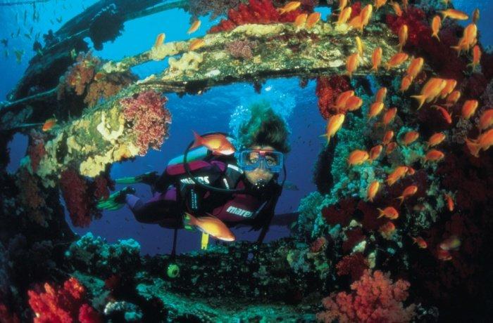 подводная красота фото