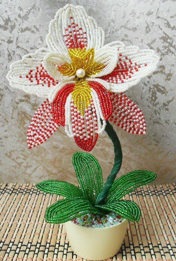 картинка орхидея из бисера рассказала, что