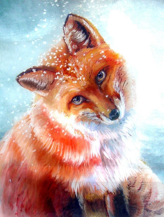 красивые картинки лисиц красками примечательно, что большая