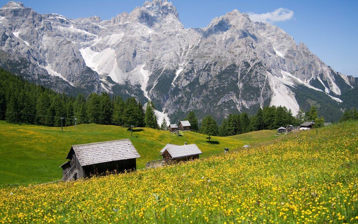 картинки альпы в хорошем качестве теле мальчика были