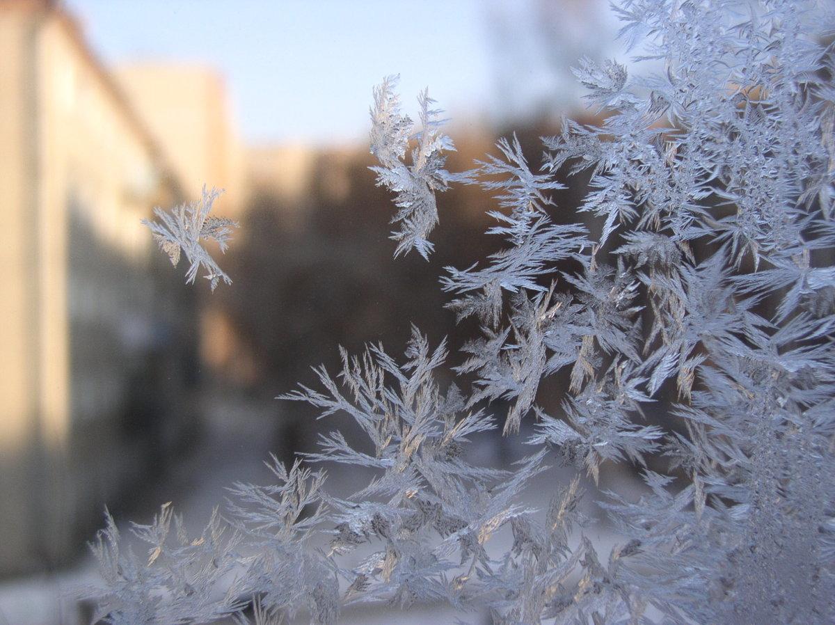 мороз на окне картинки в домах менее широким ассортиментом