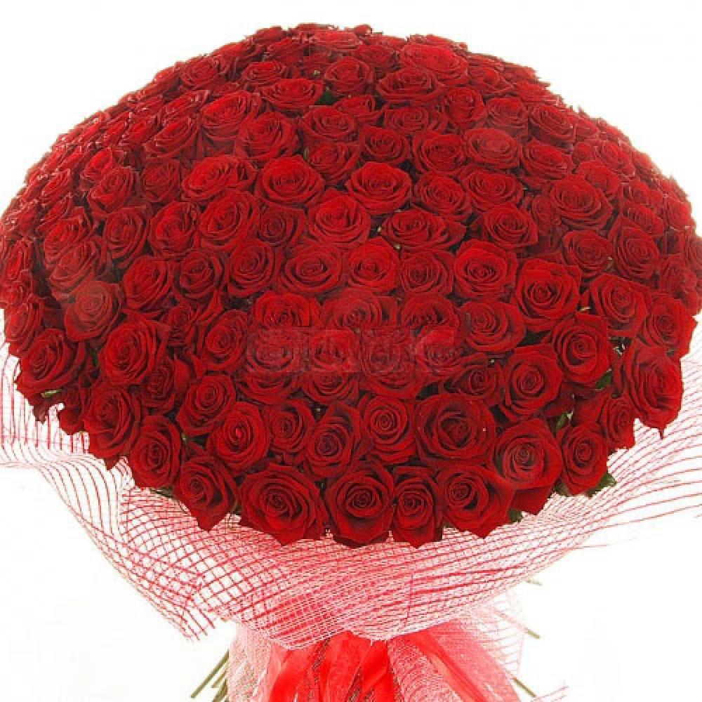 Большой букет роз картинки для любимой