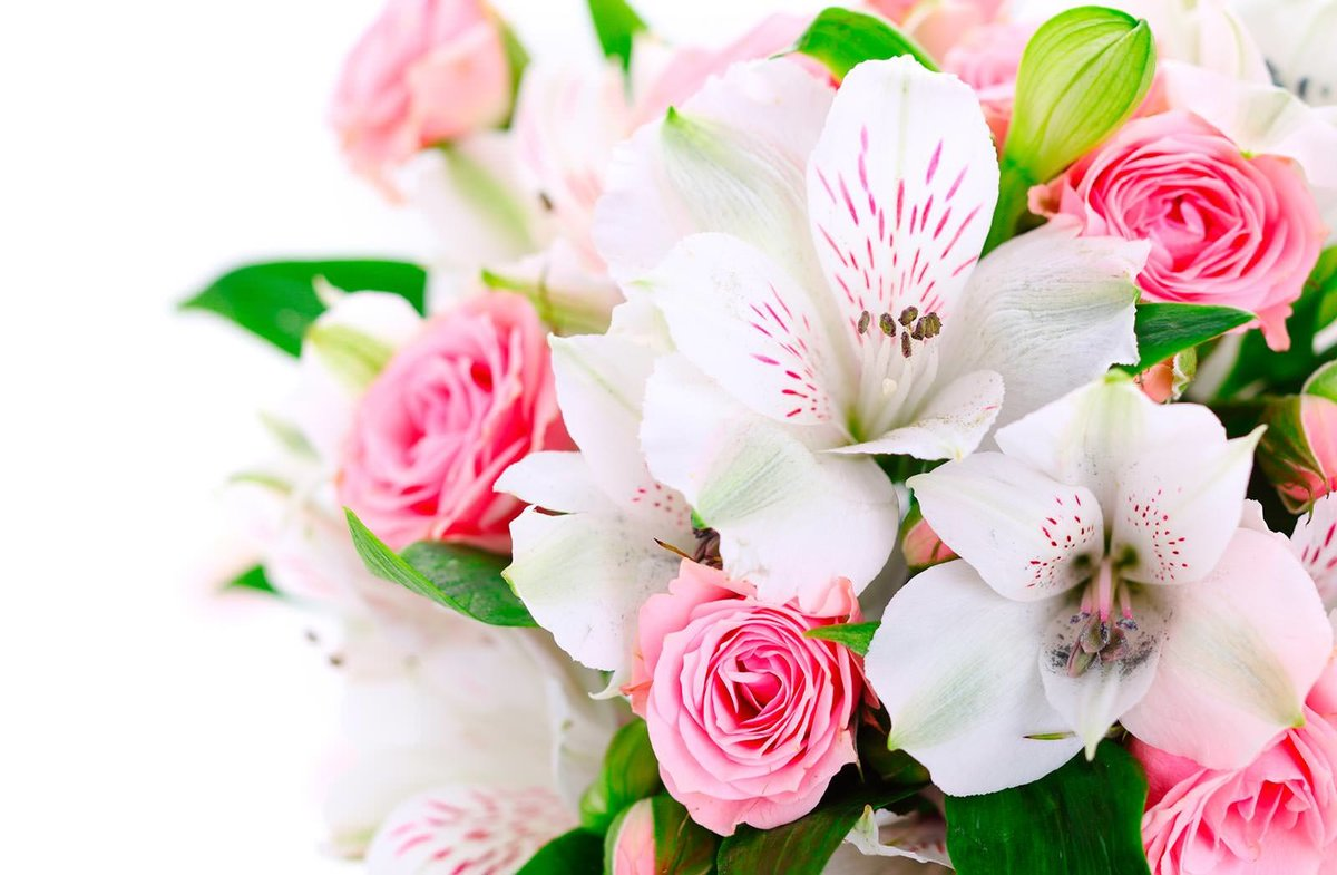 Цветы и пожелания картинки красивые, лет день