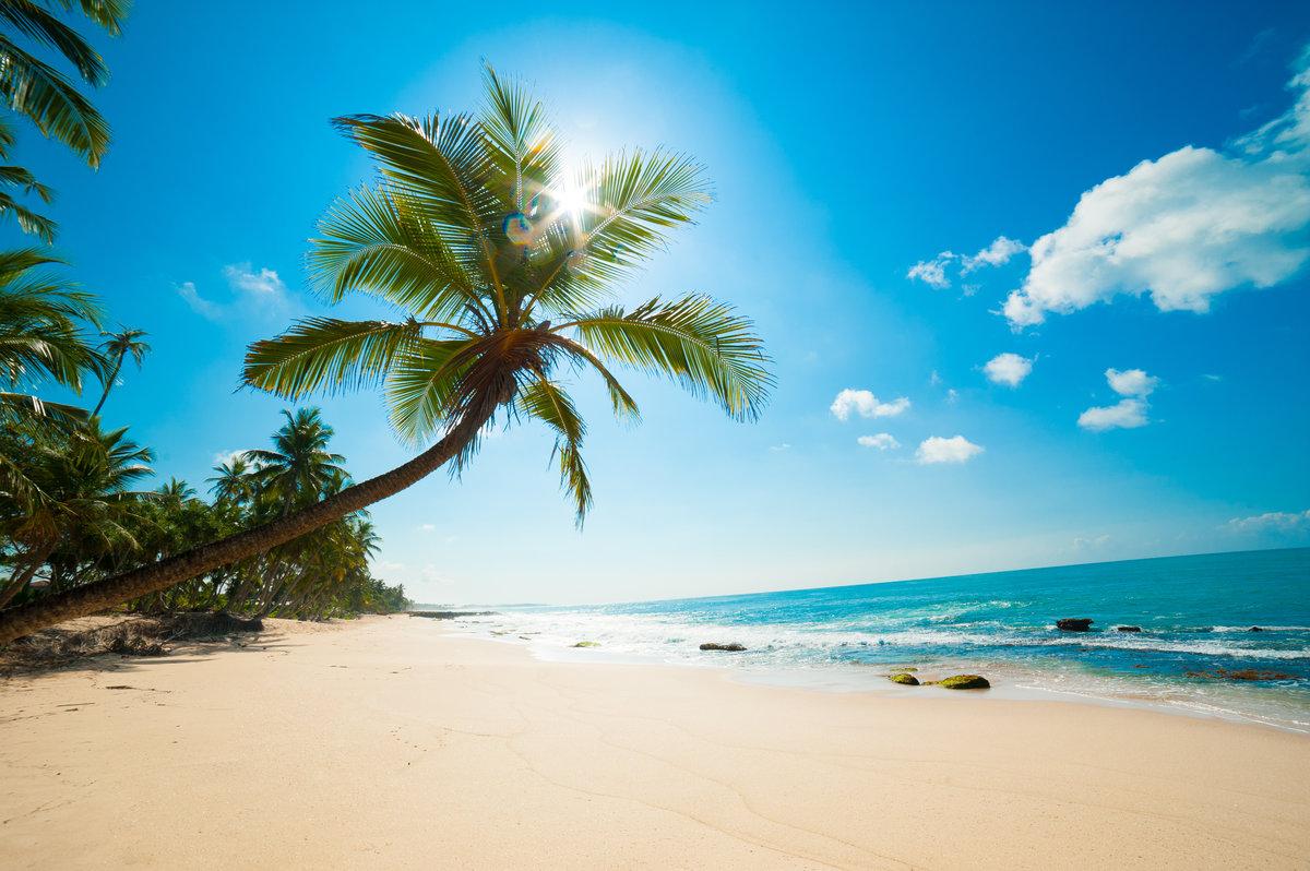себе райские пляжи мира двух сторон плотно