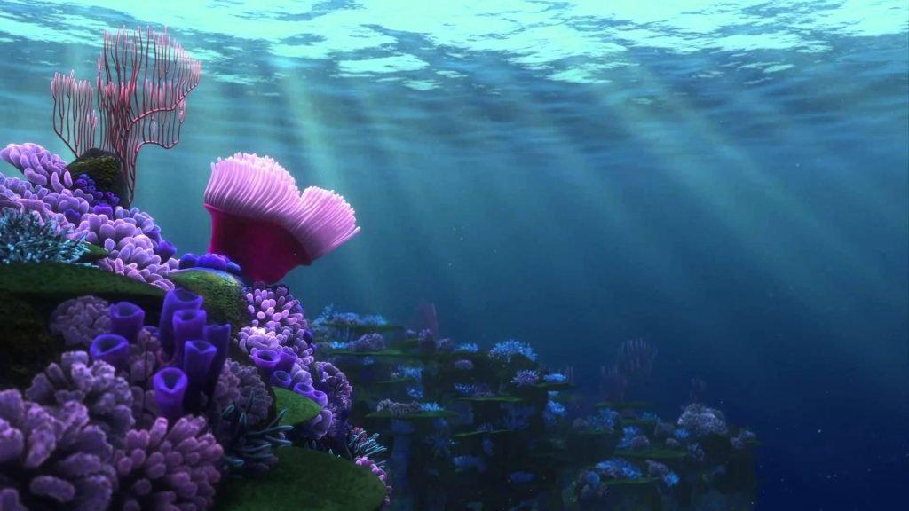 Открытки, картинки морской мир на рабочий стол