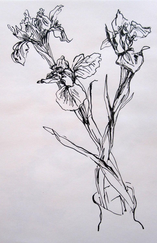 набросок стильный цветок фото двух