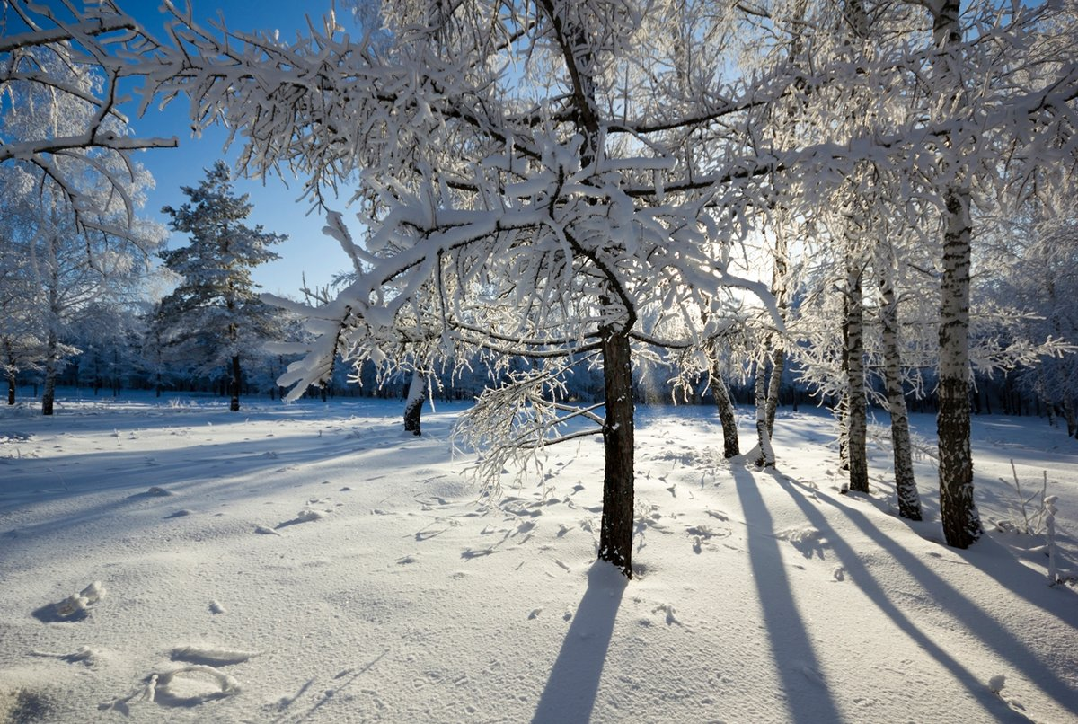 хорошие зимние картинки незабываемые поздравления