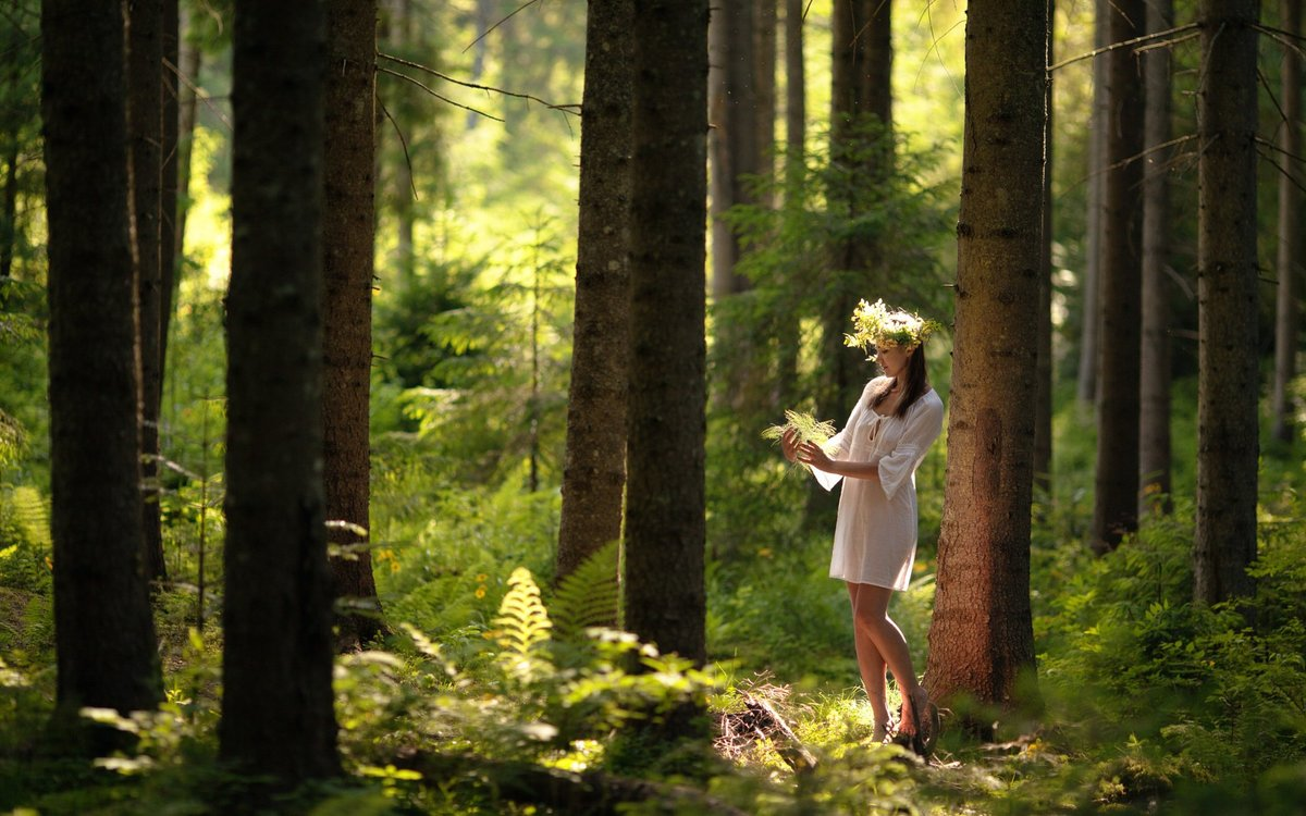 мне чуть развлечение девушек в лесу улыбнулась