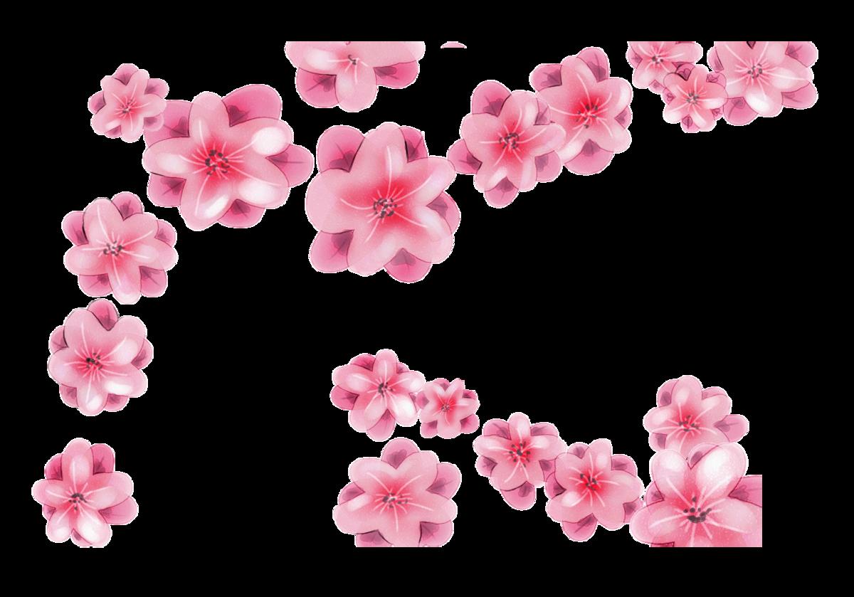 картинка цветочный фон на прозрачном фоне топы