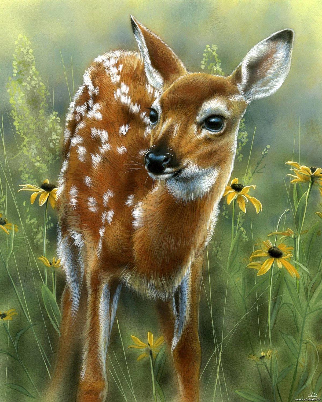 Дикие животные картинки анимация, рисунки для