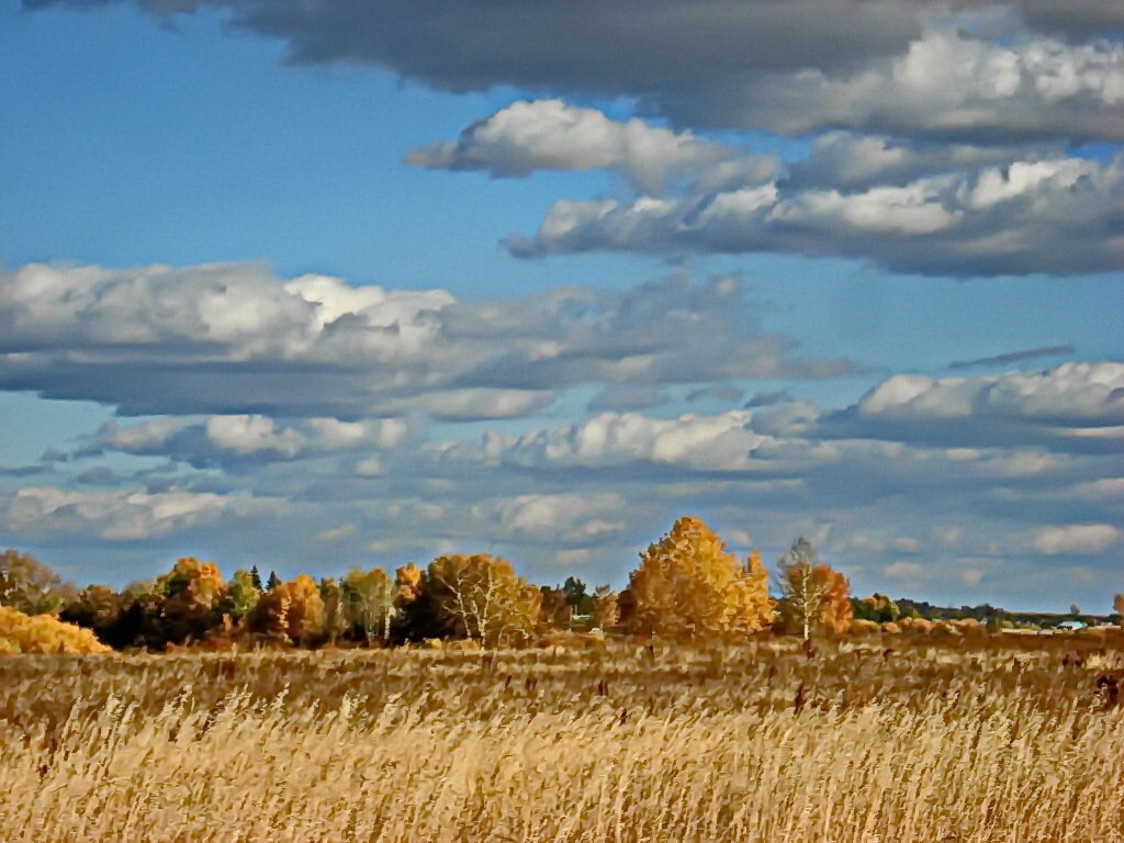 фото полей в сентябре для фотографий вот для прослушивания