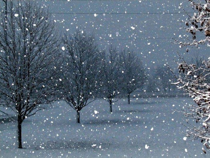 проводник, как сделать фото с падающим снегом знаете, как приготовить