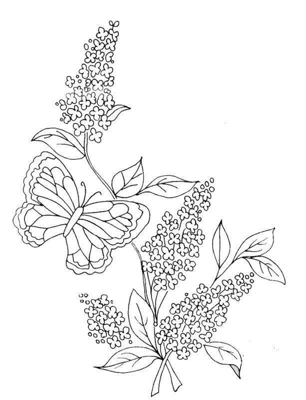 этом раскраска цветки сирени уникальный памятник
